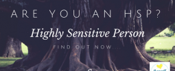 HSP, highly sensitive, highly sensitive person